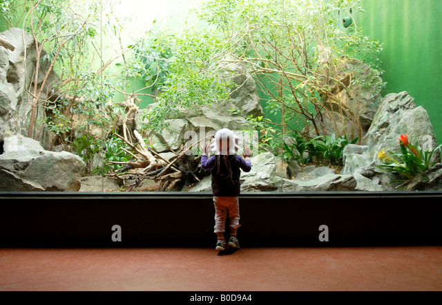 GIRL AT THE ZOO - Stock Image