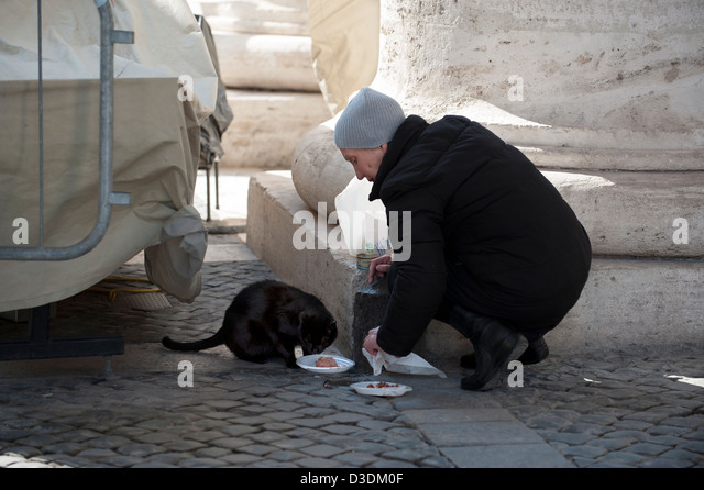 Woman give food to cat in colonnade in St Peter's Square. - Stock Image