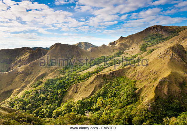 Forested and grassy hillsides in Altos de Campana national park, Republic of Panama. - Stock-Bilder