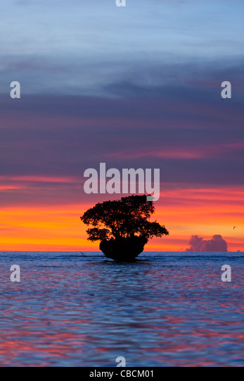 Sunset at Cenderawasih Bay, Cenderawasih Bay, West Papua, Indonesia - Stock Image