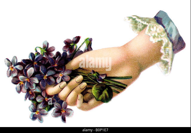 ancient ancient hand with flower gift 19th century Germany - Stock Image