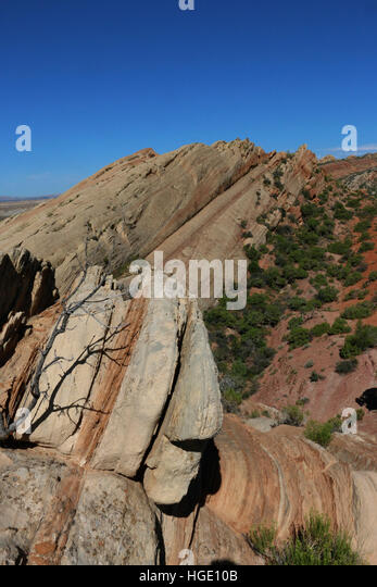 Tilted rock layers Dinosaur National Monument Utah - Stock Image