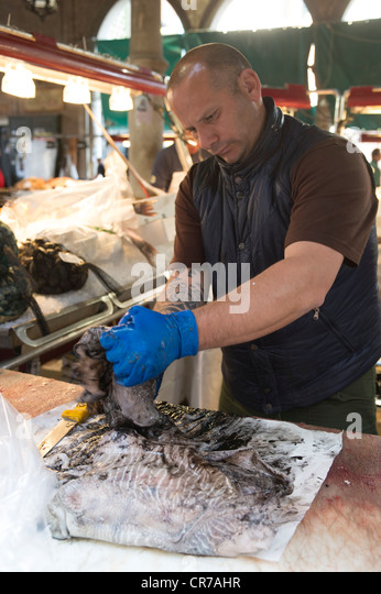 A fish monger cleaning a Cuttle fish at a fish market, Venice Italy. - Stock Image