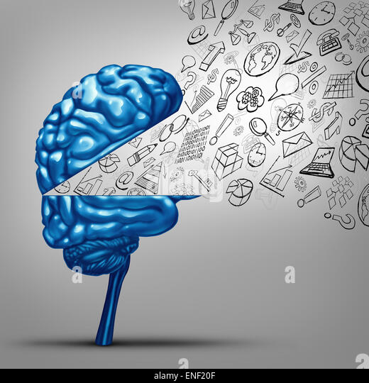 Business thoughts and financial vision concept as an open human brain with office icon symbols as charts graphs - Stock Image