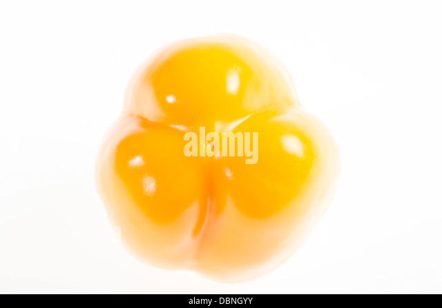 Yellow Bell Pepper, Croatia, Slavonia, Europe - Stock Image