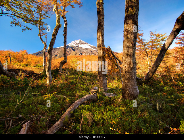 Pucon ski area, Chile - Stock Image