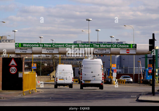 27 March 2015 - London:  White vans entering the New Covent Garden Fruit and Vegetable  Market in Nine Elms, London - Stock Image
