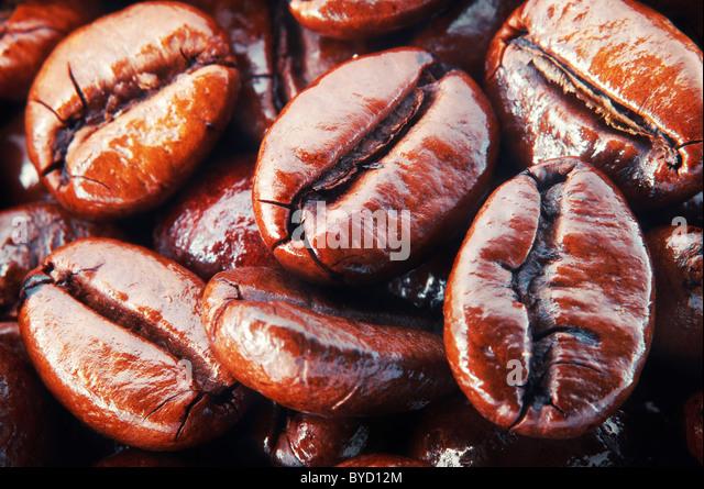Coffee beans , super macro - Stock Image