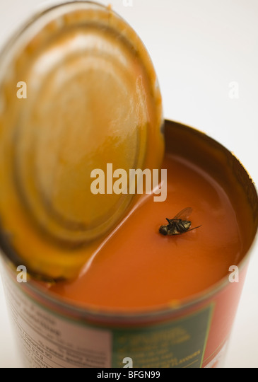 Close-up of dead housefly floating in can of tomato soup - Stock Image