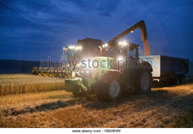 Combine Harvester Harvesting Wheat Crop At Night - Stock Image