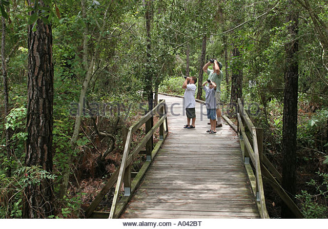 Alabama Dauphin Island Audubon Bird Sanctuary birder nature boardwalk father sons binoculars - Stock Image