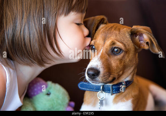 Toddler girl kissing her puppy dog - Stock Image