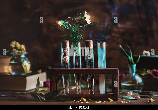 Alchemical flower. Stand with four tubes and glowing flower of fern - Stock Image