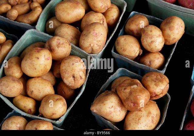 Fresh market potatoes - Stock Image