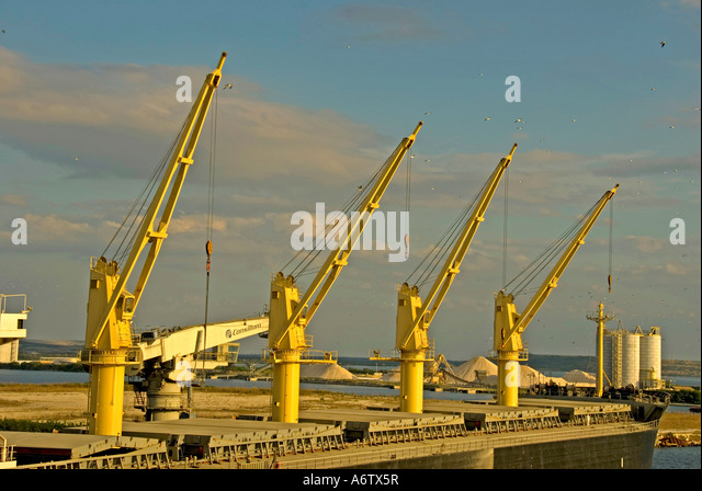 Tampa Bay Florida  Port of Tampa cargo ship bright yellow loading cranes open space text space copy space type space - Stock Image