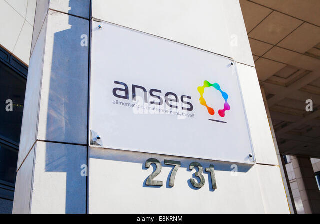 Agence stock photos agence stock images alamy for Agence immobiliere maison alfort