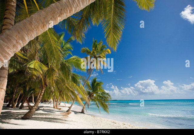 BEACH ON SAONA ISLAND PARQUE NATIONAL DEL ESTE DOMINICAN REPUBLIC CARIBBEAN - Stock Image