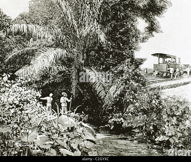 Africa. Congo. Construction of the railway in the territory colonized by Belgium. Engraving in 1892. - Stock-Bilder