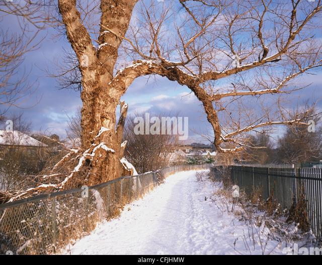 Snow covered footpath, Murrayfield, Edinburgh - Stock Image