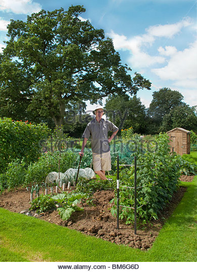 Man working in abundant garden - Stock Image