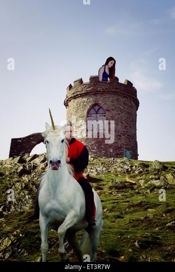 Knight, shining, armour, princess, prince, charming, fantasy, fairy-tale, happy ending, castle, fiction, re-enactment, - Stock Image