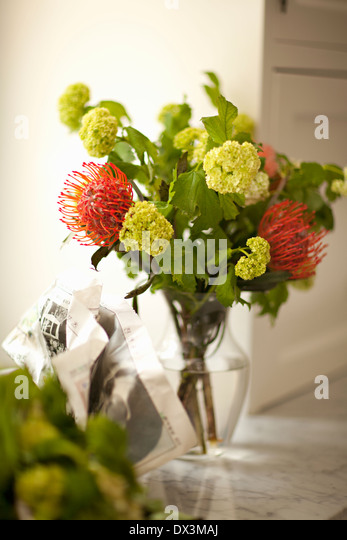 Spider mums and green viburnum flower bouquet in vase on counter - Stock Image