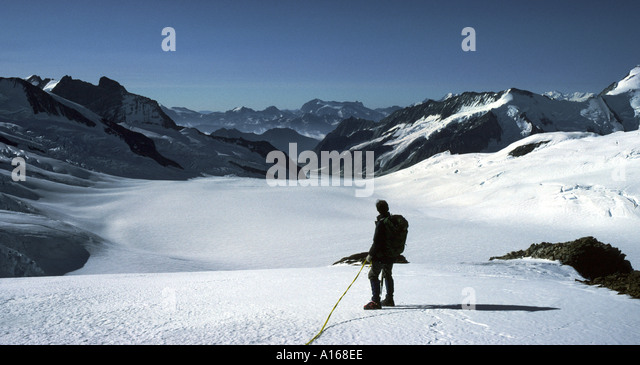 The Grosser Aletsch glacier from the Walcherhorn, Bernese Oberland, Switzerland - Stock Image