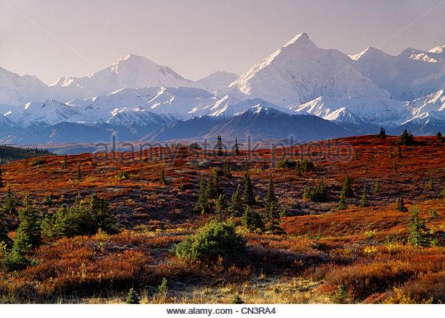 Fall landscape, Alaska Range, Denali National Park, Alaska - Stock Image