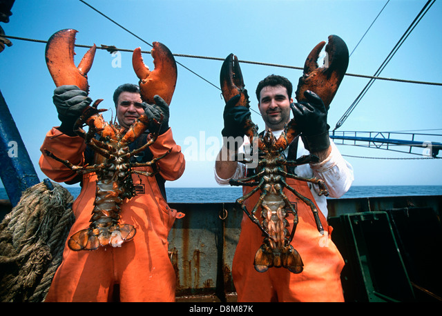 Homarus Stock Photos & Homarus Stock Images - Alamy