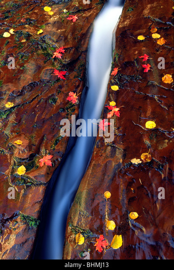 Crack in the Rock - Stock Image