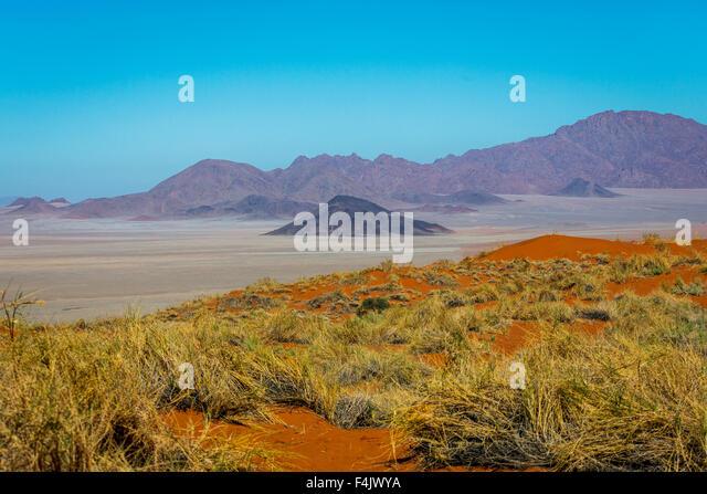 Desert landscape at the Wolwedans Dunes Lodge, Namibia, Africa - Stock Image