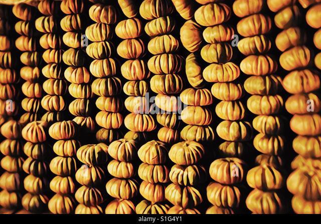 Pumpkins, floating market, Mekong Delta, Vietnam - Stock-Bilder
