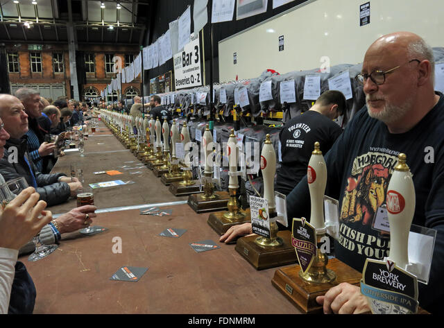 At the bar of the Manchester Central CAMRA winter beer festival 2016,Lancs,England, UK - Stock Image