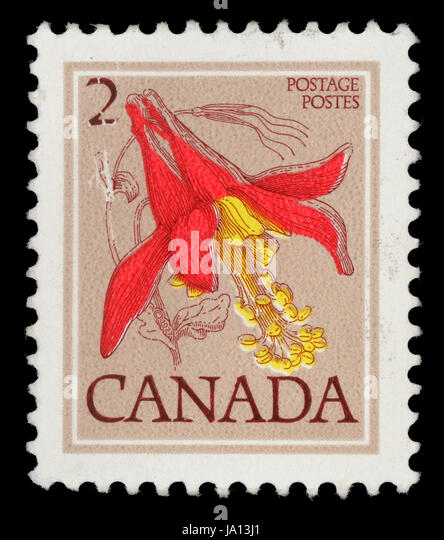 CANADA - CIRCA 1977: A stamp printed in Canada shows Flower: Red columbine, from the series 'Flowers' , - Stock Image