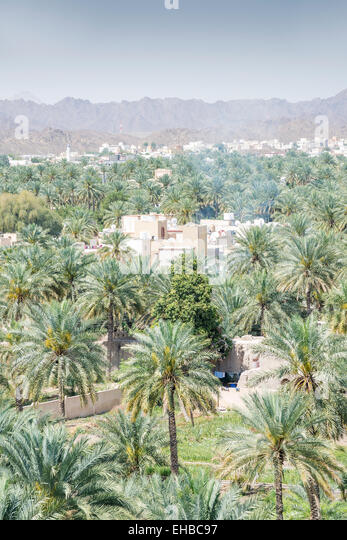 View from the fort to buildings and palms of the town Nizwa, Oman - Stock Image