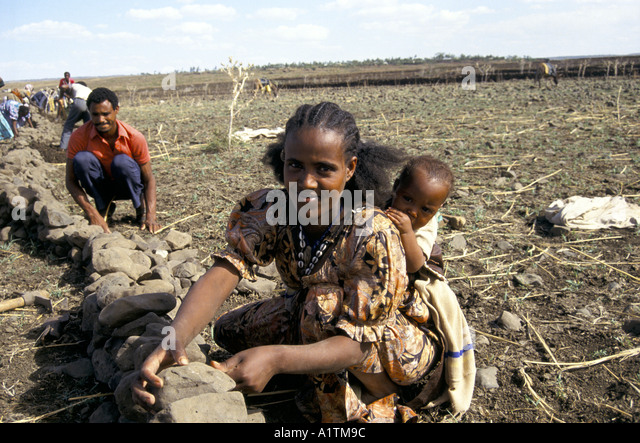 WOMAN WITH CHILD BUILDING SOIL EROSION WALLS WITH ROCKS IN ERITREA MAY 1993 - Stock Image