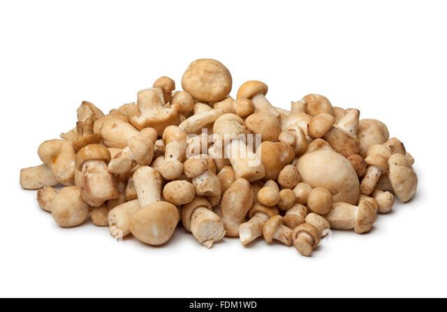 Fresh St.George's mushrooms on white background - Stock Image