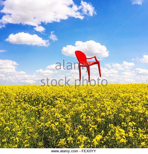 View Of Yellow Field Against Cloudy Sky - Stock Image