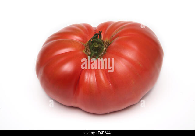 Brandywine Heirloom Tomato - Stock Image