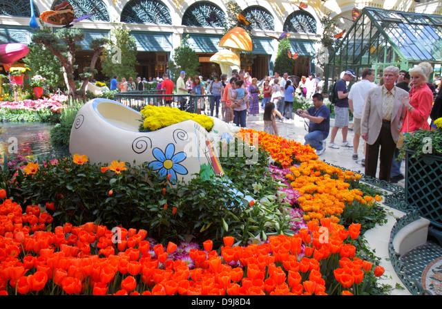 Nevada Las Vegas The Strip South Las Vegas Boulevard Bellagio hotel casino Conservatory & Botanical Gardens - Stock Image