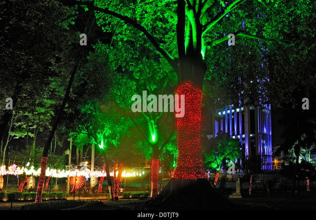 City, park, tree, downtown, lights, Christmas decorations, Bogota, Colombia, South America, night - Stock Image