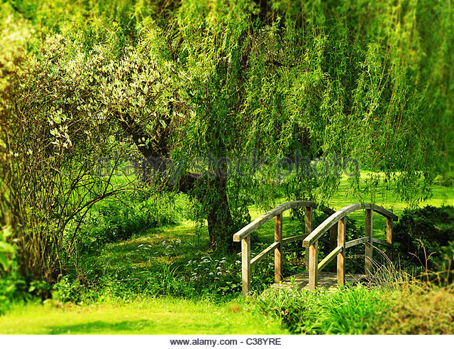 Garden footbridge - Stock Image