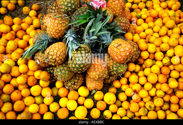 tropical friuts pineapple lemon - Stock Image