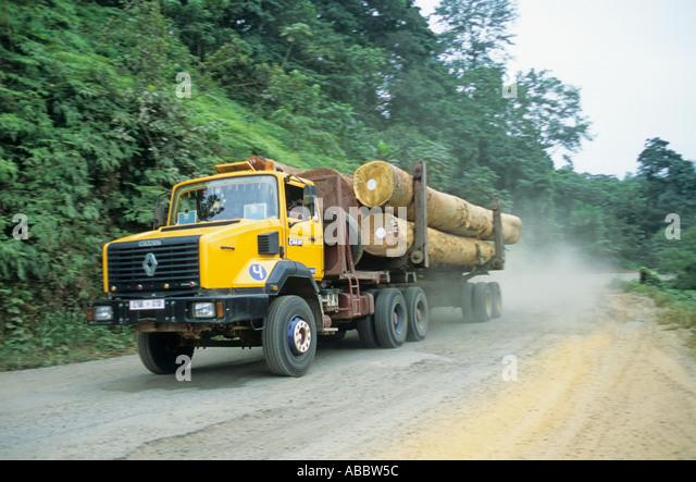 Logging the rainforest, Gabon - Stock Image