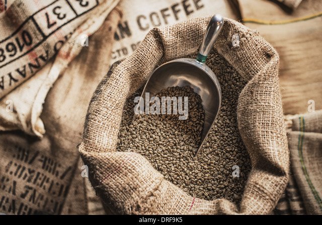 New York state USA Hessian sacks beans coffee bean processing shed - Stock Image