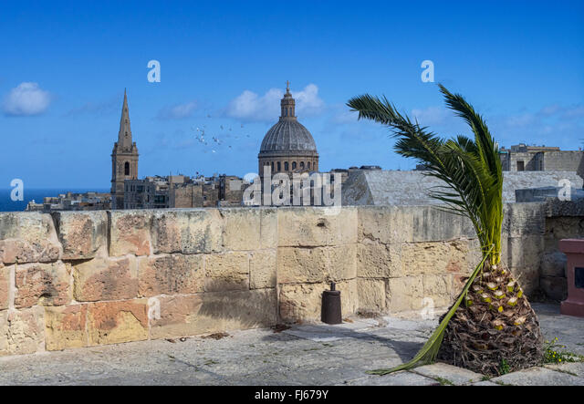 A palm tree sways gentle in the breeze where a gun used to be placed on the walls of Valletta, capital of island - Stock Image