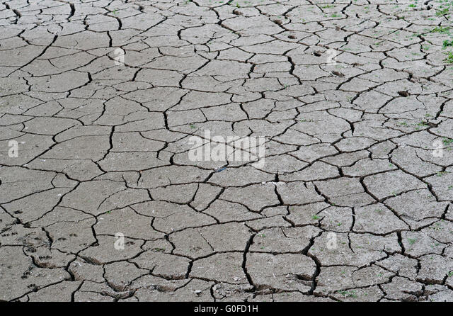 Ecological disaster stock photos ecological disaster for Soil salinization