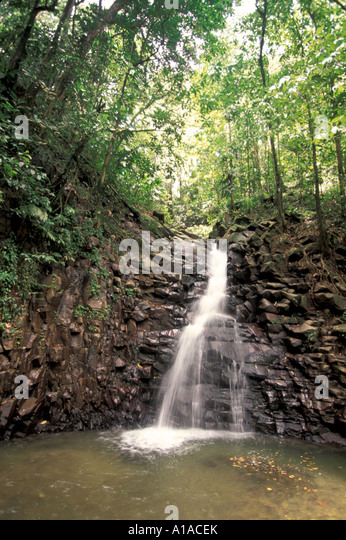 St Lucia  enbas saut  waterfall - Stock Image