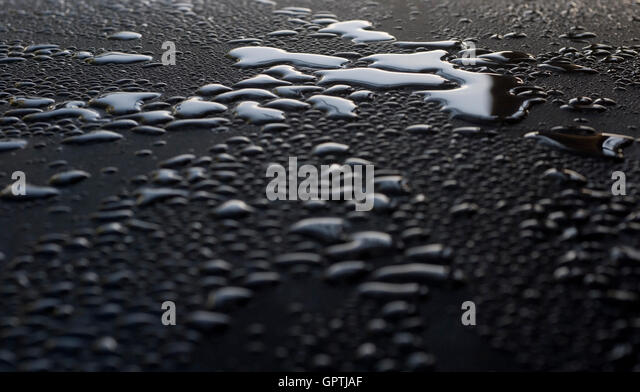 Water drops on shiny surface after rain - Stock Image