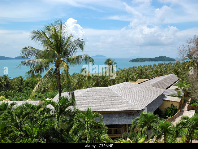 Palm Frond Roof Stock Photos Amp Palm Frond Roof Stock Images Alamy